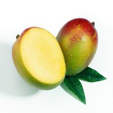 Как правильно посадить косточку манго